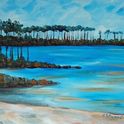 Western Lake 30A Painting Party